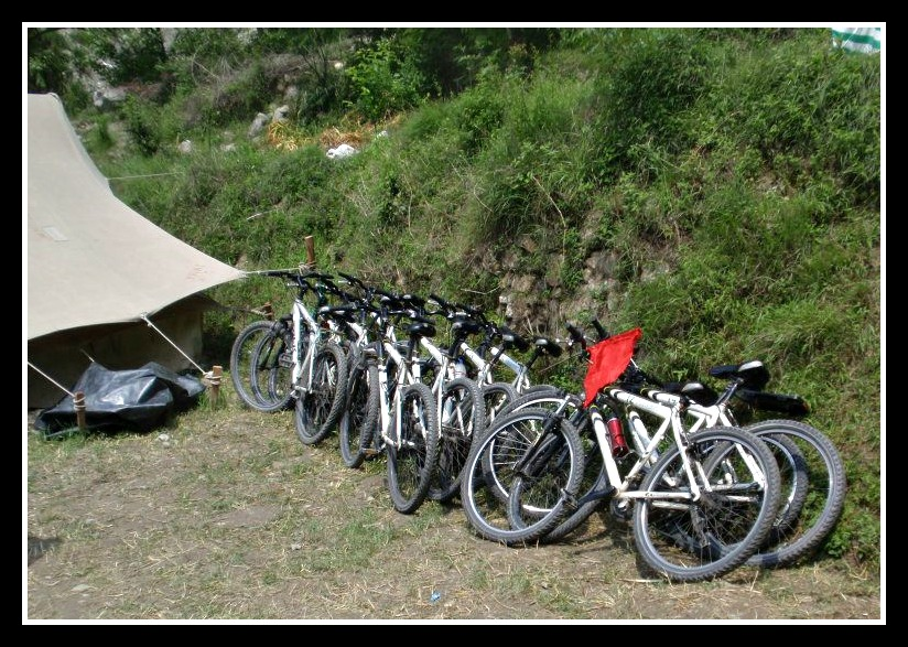 Cycles at Rest in the Camp
